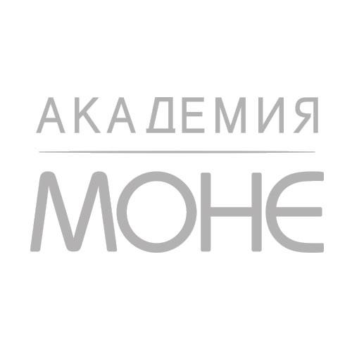 Академия Моне